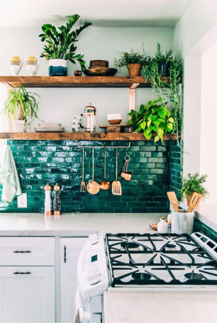 Cozinha verde com plantas diversas