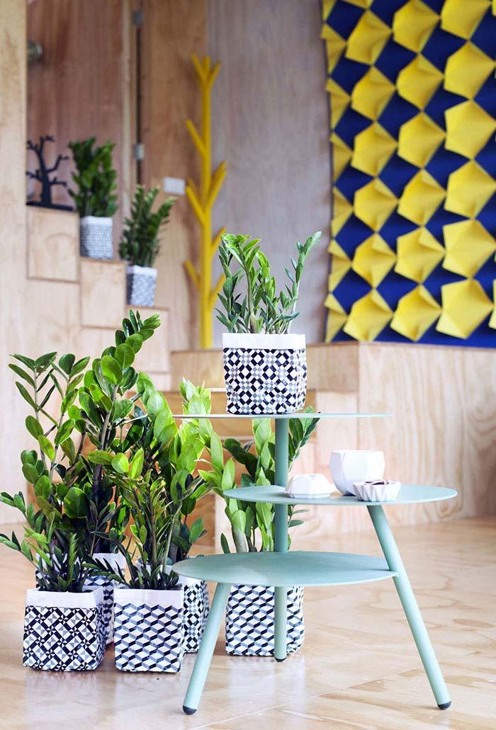 Zamioculcas plantadas em vasinhos de estampa geométrica