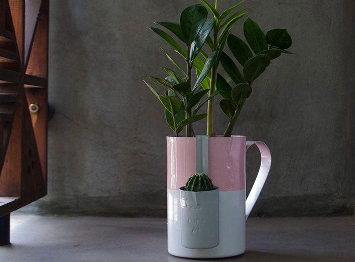 Zamioculca plantada na jarra esmaltada