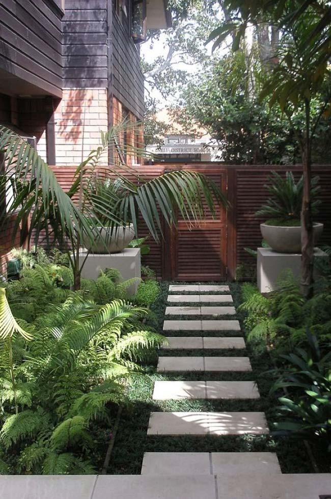 Jardim pequeno com muitas plantas