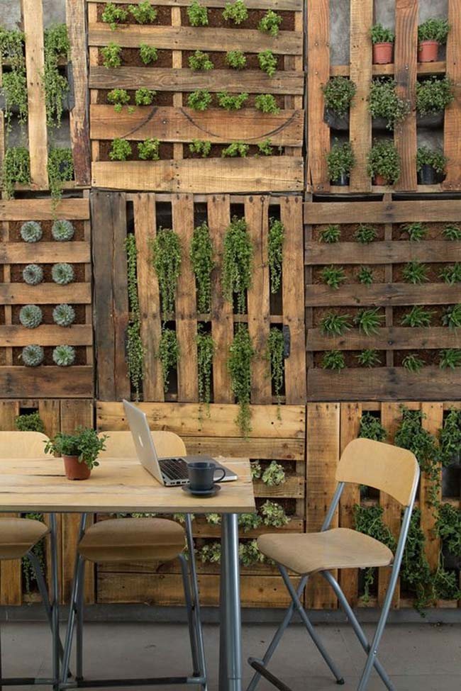 Jardim vertical com parede de pallet