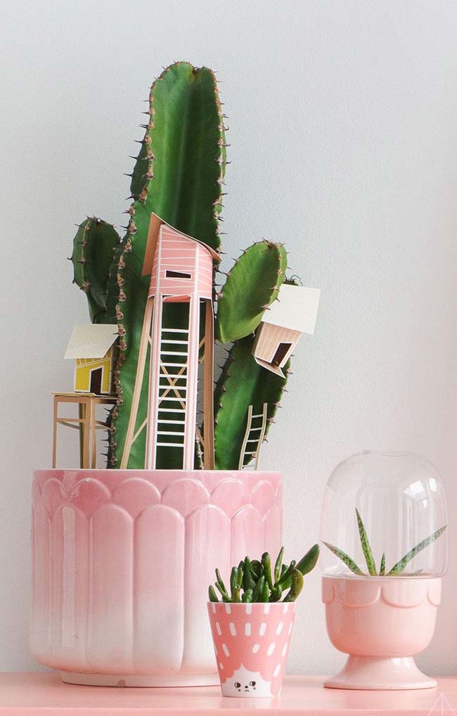 Ideia inusitada para decorar vasinho de suculentas