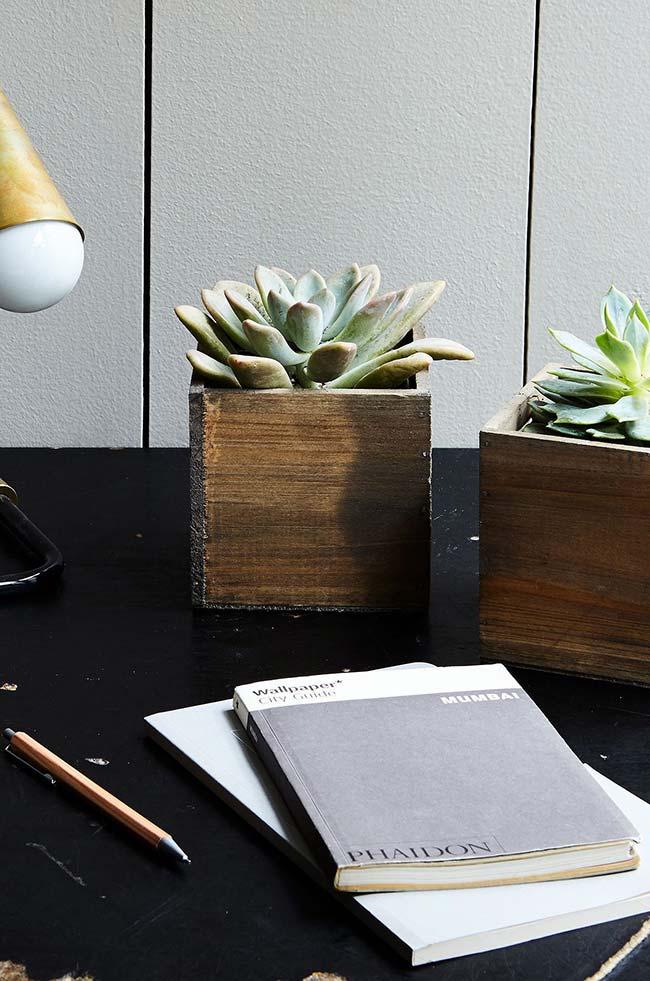 As suculentas são ideais para decorar home offices e escritórios
