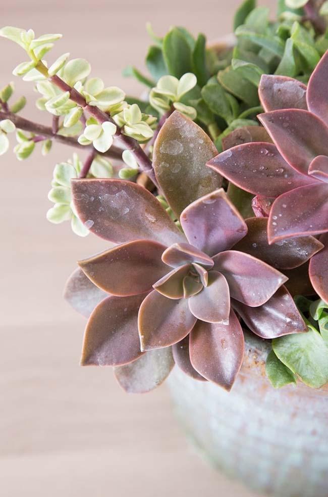 Folhas em formato de pétala de flor; uma opção linda, barata e fácil de decorar a casa