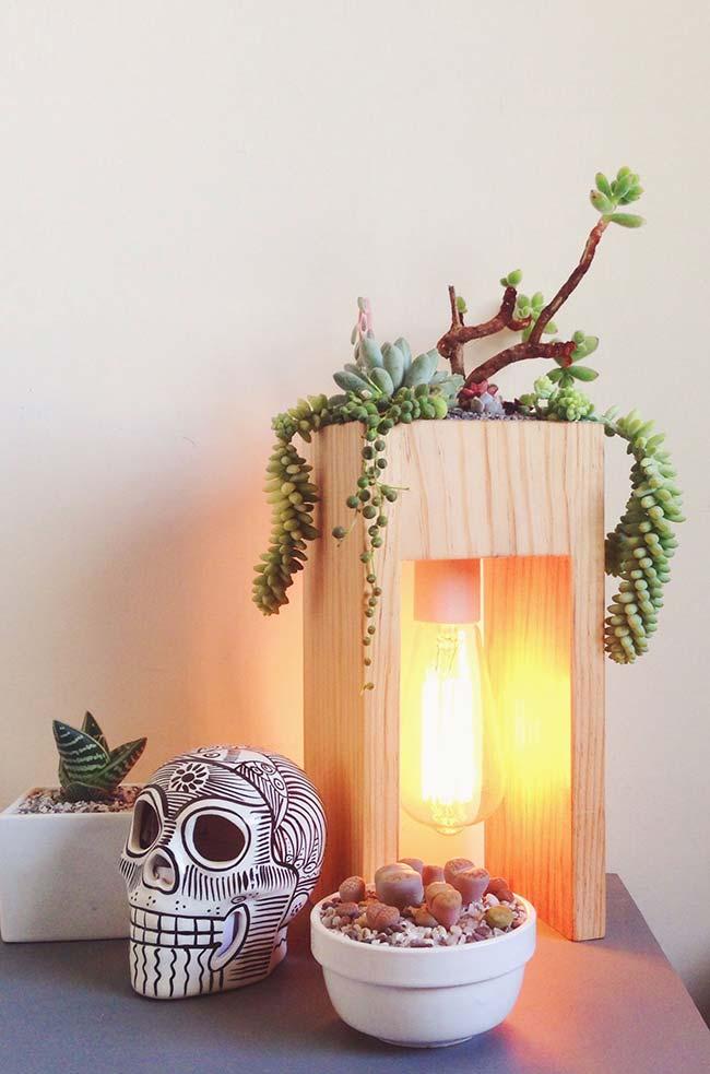 Uma ideia criativa: decorar a luminária com suculentas