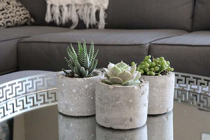 Vasos de cimento com suculentas