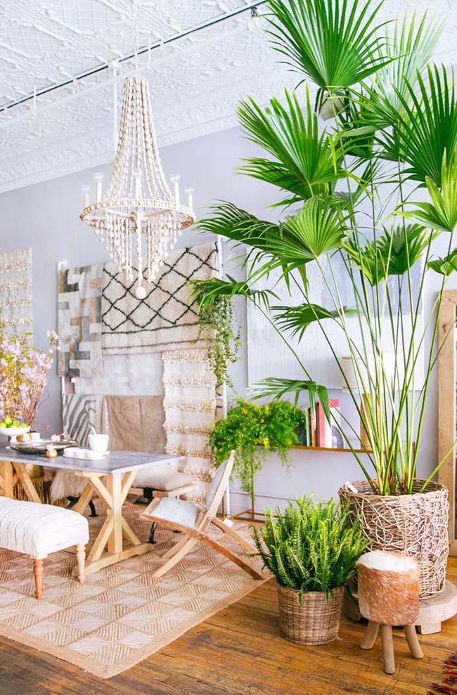 Vaso de palmeira ráfia para deixar qualquer um boquiaberto