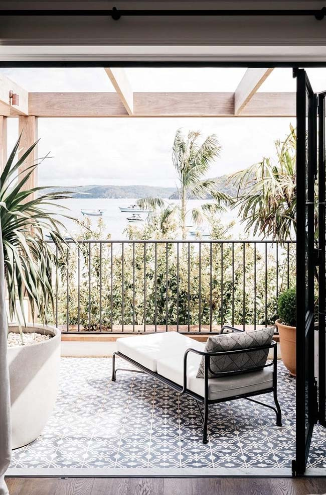 Palmeira ráfia para cultivar na varanda