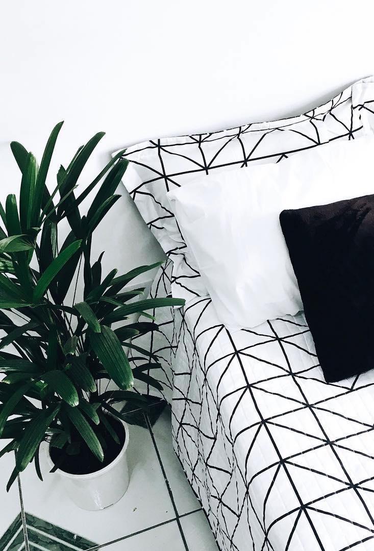 Decoração preto e branco com o verde da palmeira ráfia