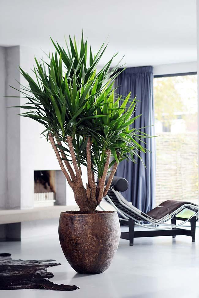 Vaso bonito para valorizar a decoração com palmeira ráfia