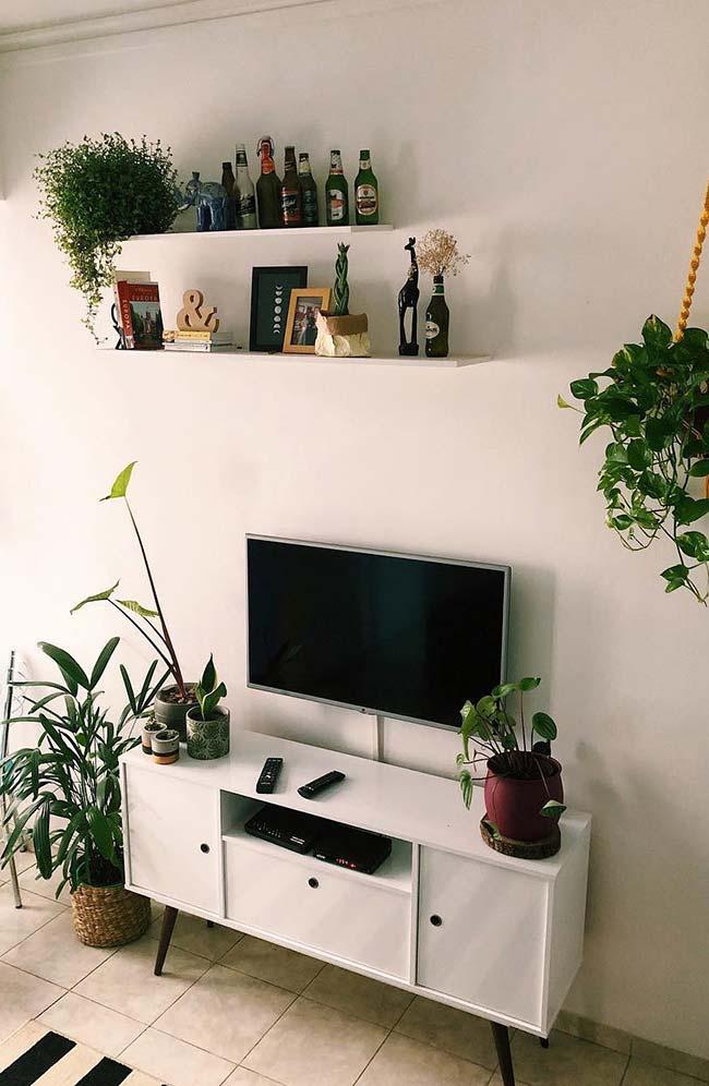 Plantas interferem diretamente na decoração do ambiente
