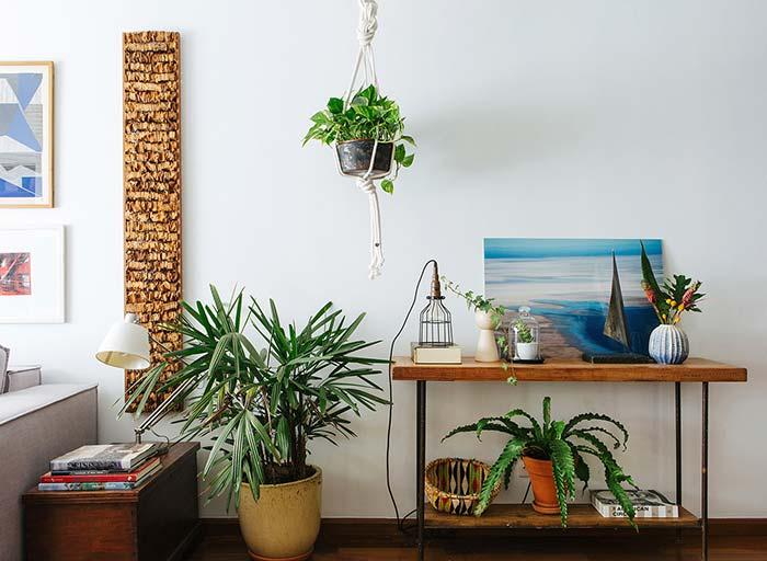 O vaso menor e mais baixo da Palmeira Ráfia deixa a decoração mais descontraída e informal