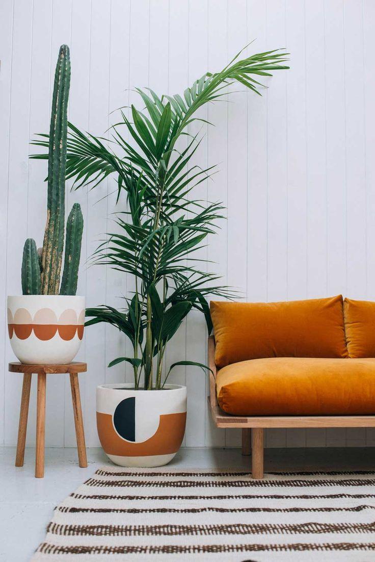 Vaso de palmeira ráfia ao lado do sofá