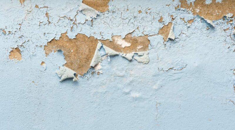 Como tirar umidade da parede: conheça dicas práticas