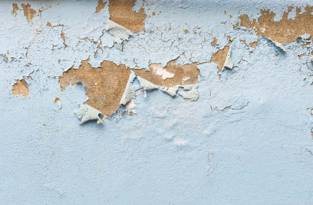 Como tirar umidade da parede passo a passo