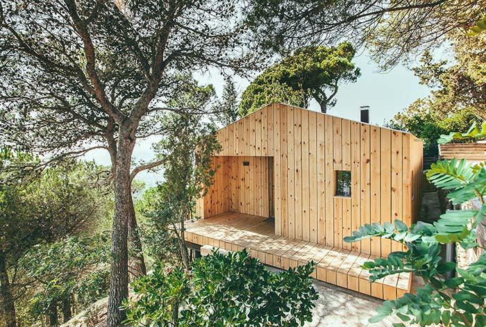 Casas baratas: quer economizar? Use madeira de pinus