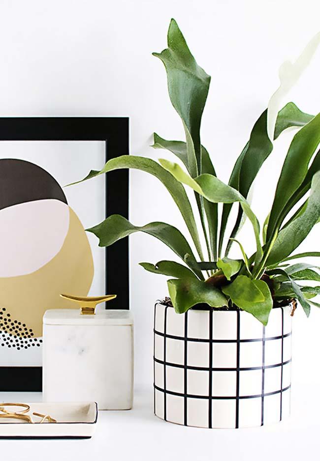 Vasinho de planta com fita isolante