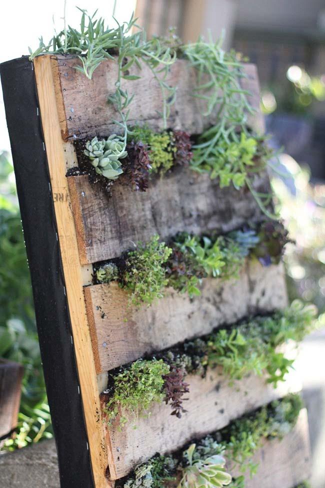 Mini jardim vertical de pallets