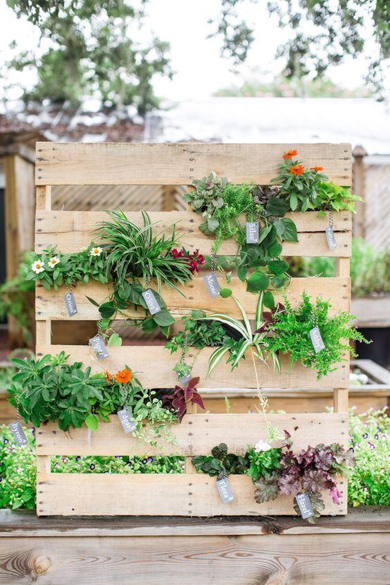 O tom claro da madeira do pallet destaca o verde intenso das plantas