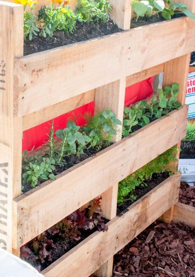 Pallet Vegetable Garden Fence
