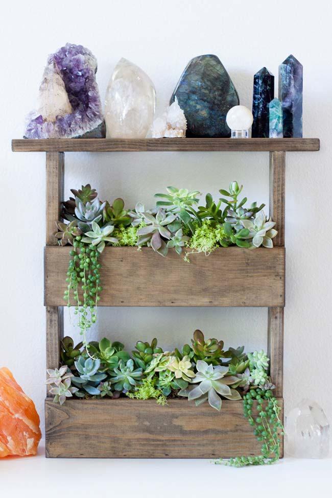 Plantas e pedras naturais para atrair energias positivas dentro de casa