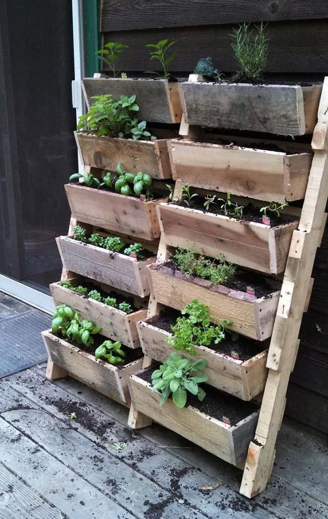 Escada de pallet para verdurass