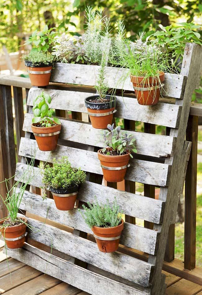 Para deixar o seu jardim ainda mais charmoso, escreva o nome de cada planta no vaso