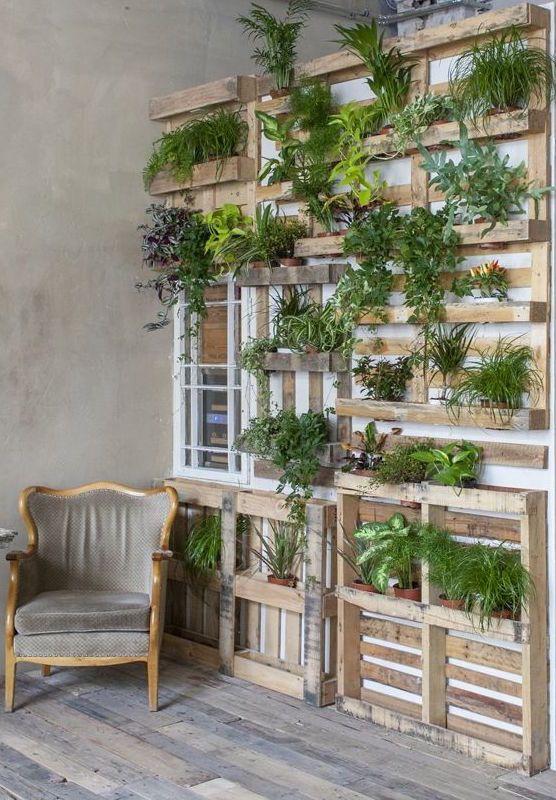 Uma parede de pallets para você decorar como quiser e com diversos tipos de plantas