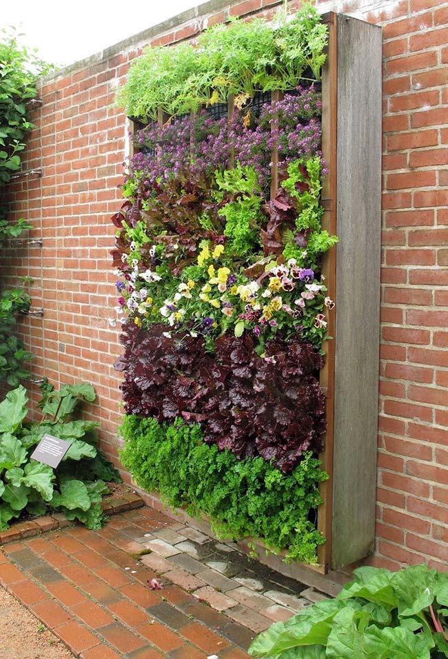 Um maciço verde na parede realçado pelas camadas naturais de cores das diferentes plantas