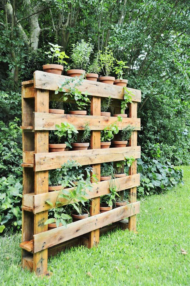 Jardim vertical de pallets decorando a área externa
