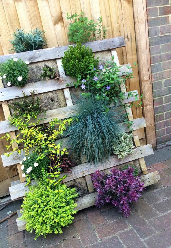Adapte o jardim vertical para o espaço que você tem disponível; o importante é ter um