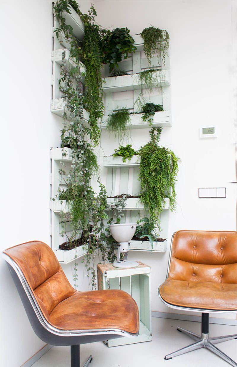 Jardim vertical de pallets em formato L para decorar o escritório