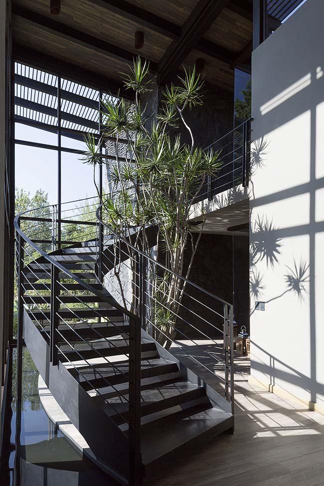 Um jardim de dracenas gigantes embelezam o vão embaixo da escada