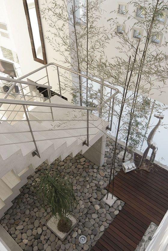 Para melhor aproveitar o pé-direito alto da casa foram utilizadas plantas de crescimento