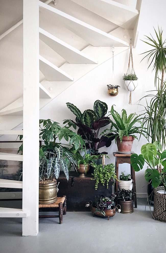 Um cantinho verde embaixo da escada montado com muito cuidado e carinho