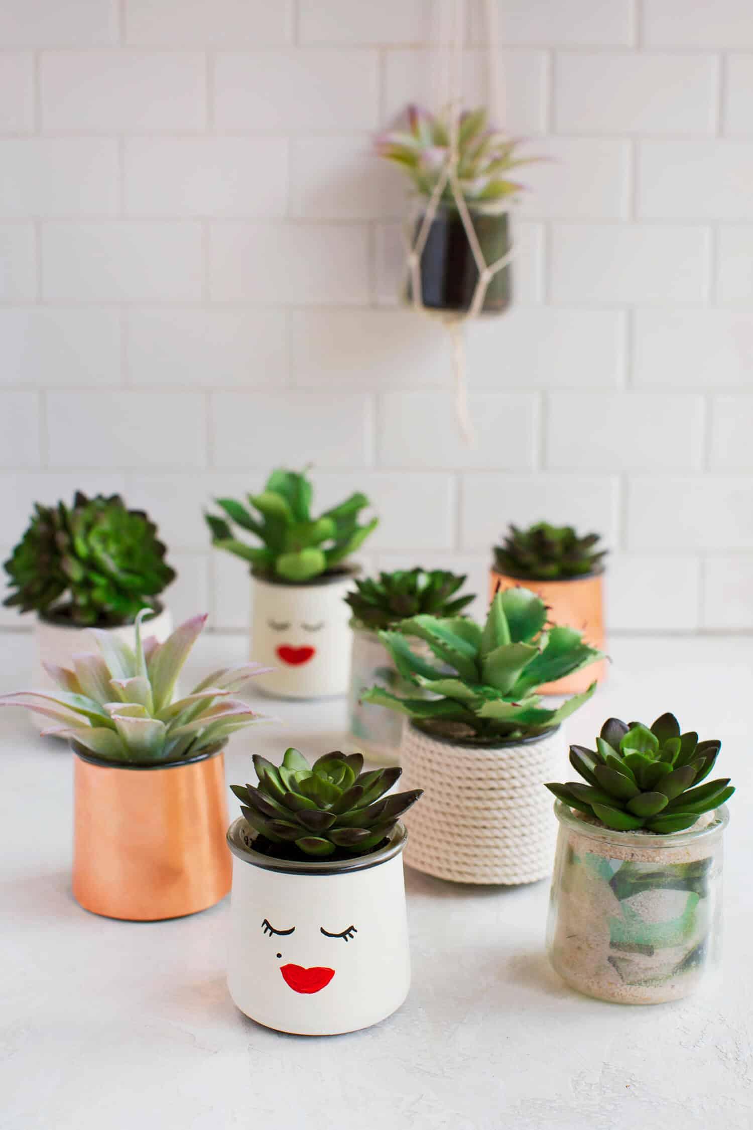 Vaso de suculentas com materiais recicláveis