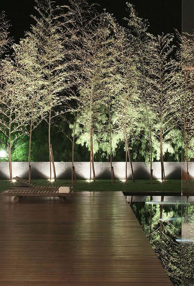 Nesse jardim, a iluminação nas árvores criou um efeito de espelho na piscina