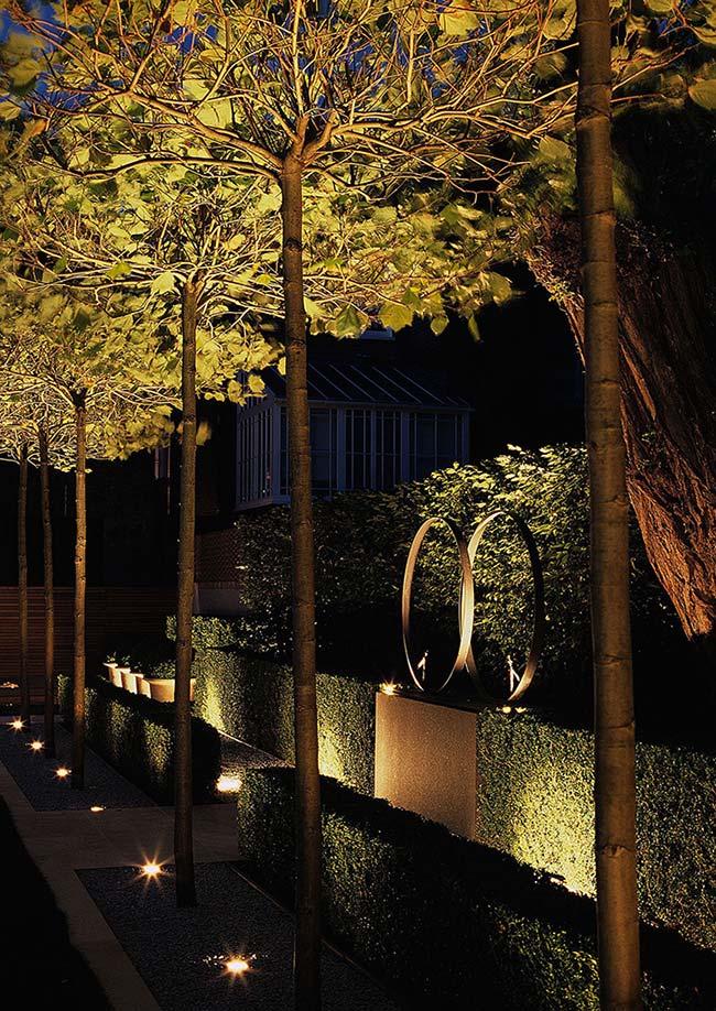 O 'alvo' desse projeto de iluminação são as copas das árvores e o maciço verde ao fundo