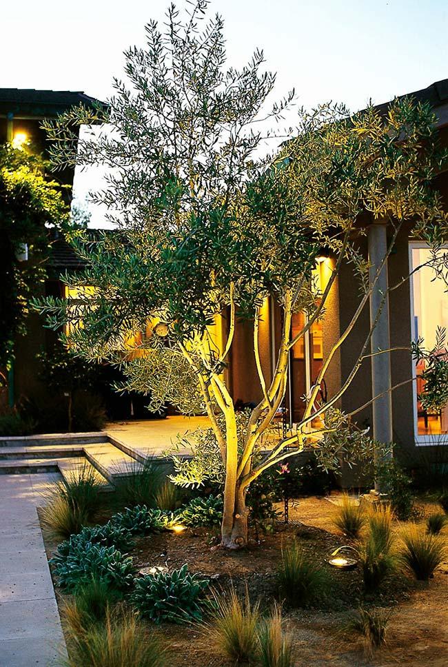 O tom amarelado marca esse projeto de iluminação que pode ser contemplado até durante o dia