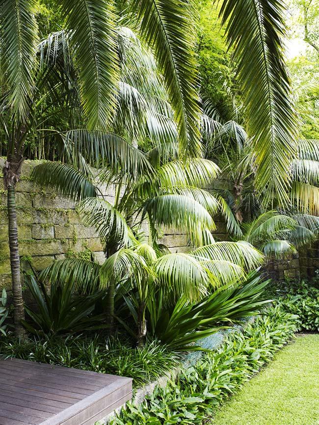 Um cantinho fresco e verde para você apreciar e repor as energias