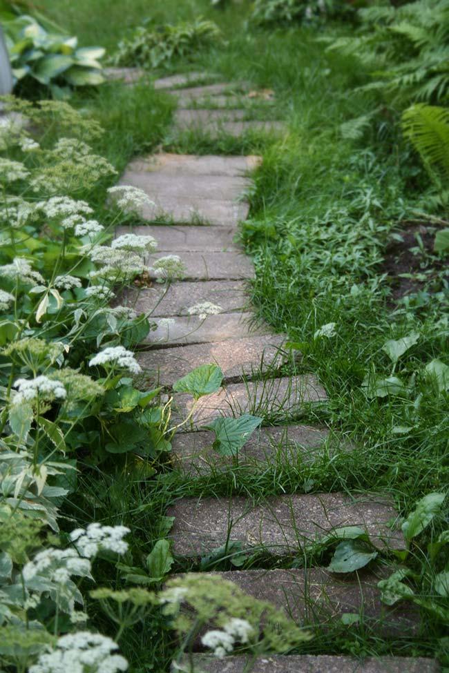 Deixe a grama preta crescer livremente
