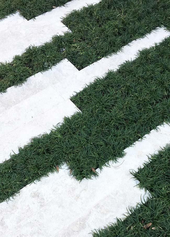 Contraste do verde intenso da grama preta com a passagem branca