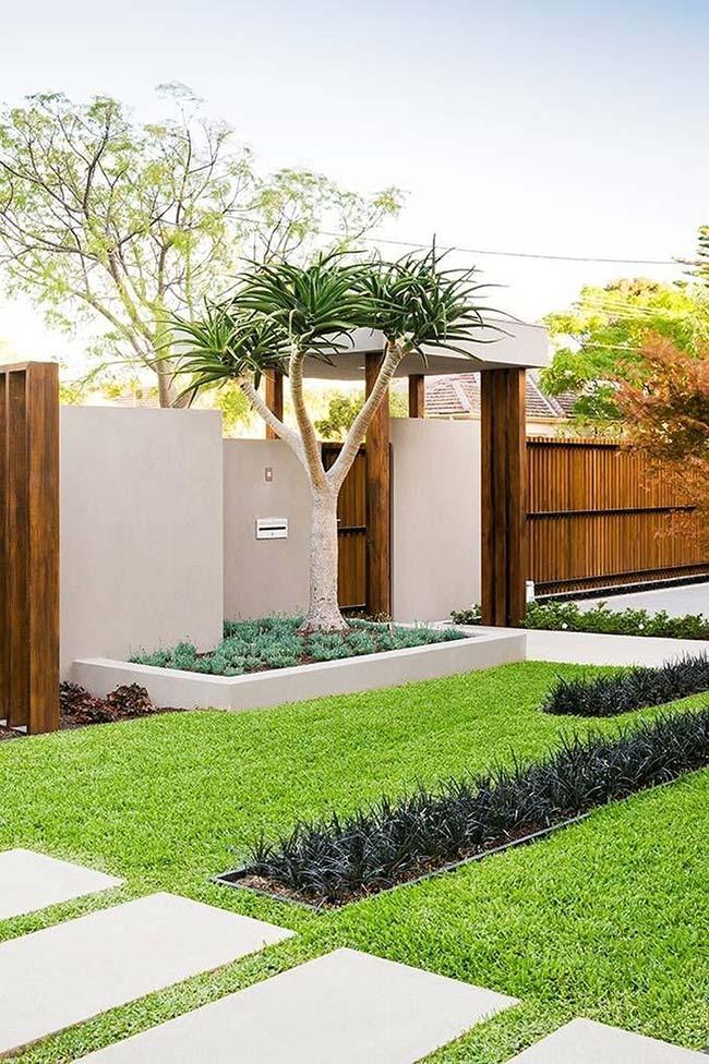 Nesse jardim, a grama preta foi usada com destaque em pequenos canteiros centrais