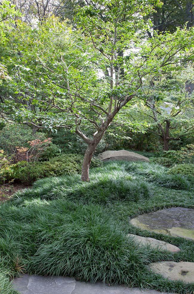 Junto às pedras, a grama preta ganha um aspecto mais 'selvagem'