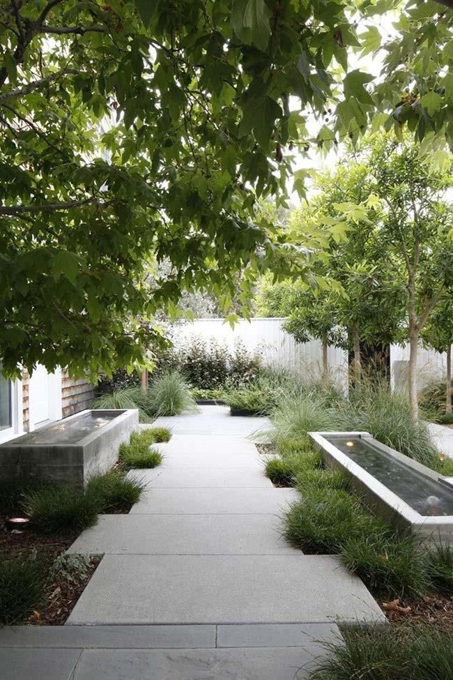 Plante touceiras de grama preta separadas uma das outras para criar esse efeito árido no jardim