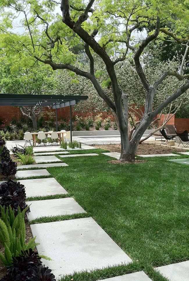 Como a grama preta não pode ser pisoteada, o ideal é cobrir a área de passagem com pedras ou outros tipos de passantes