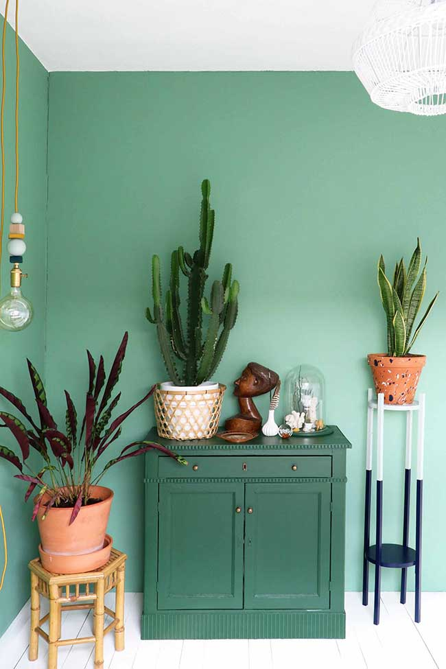 Parede verde jade