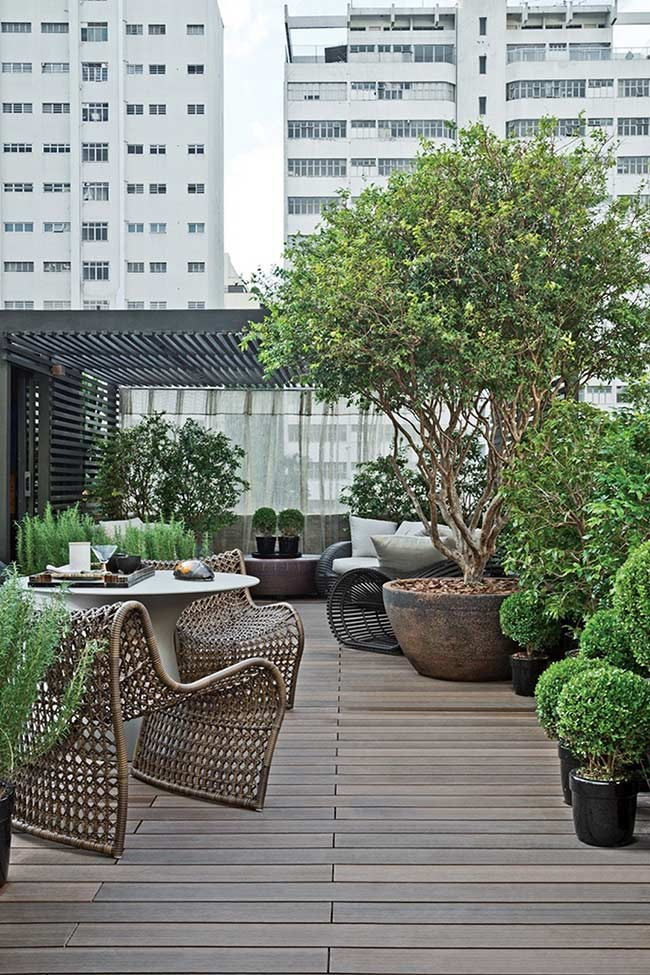 Plantas e móveis de fibras naturais