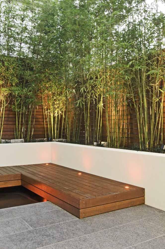 Ao redor do deck de madeira, os altos e esguios bambus mossô criam uma cerca verde valorizada pela iluminação indireta
