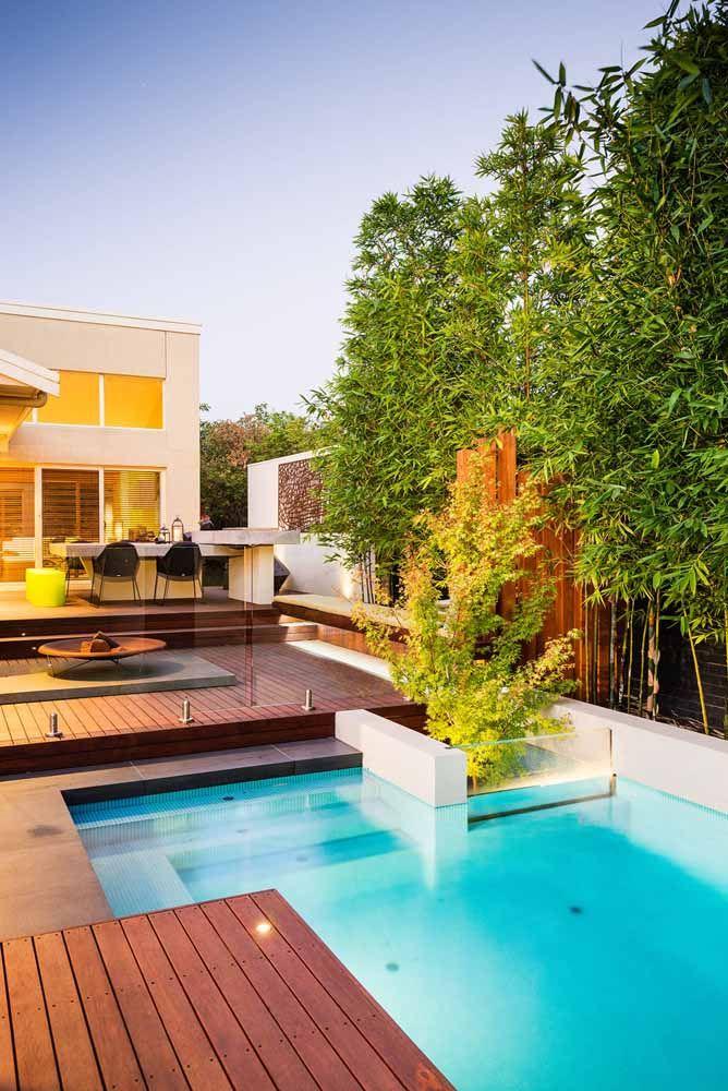 Os bambus mossô também são uma ótima opção para a beira da piscina